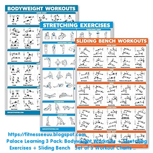 Stretching Exercises Sliding Bench Palace Learning 3 Pack: Bodyweight Workouts Set of 3 Workout Charts