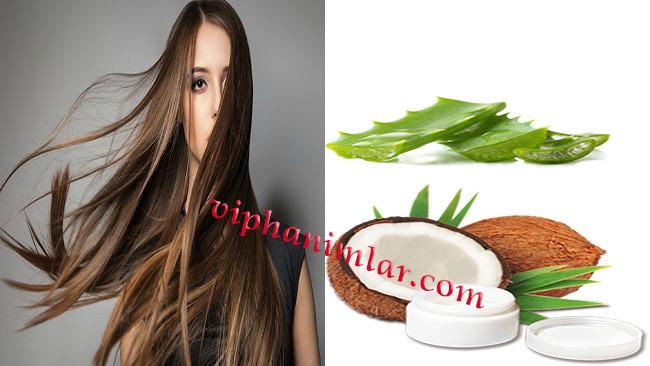 Saçların Hızlı Uzaması İçin Hindistan Cevizi Ve Aloe Vera