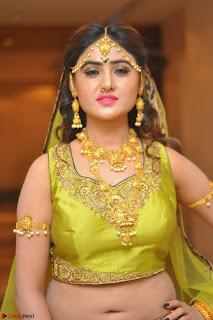 Sony Charishta in Green Choli Ghagra Transparent Chunni Ethnic Wear March 2017 049.JPG