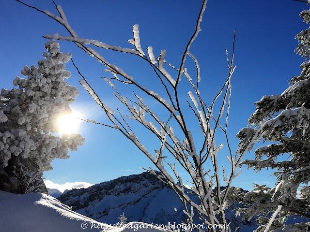 Schnee auf dem Stoos
