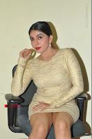 Actress Pooja Roshan Stills in Golden Short Dress at Box Movie Audio Launch  0070.JPG