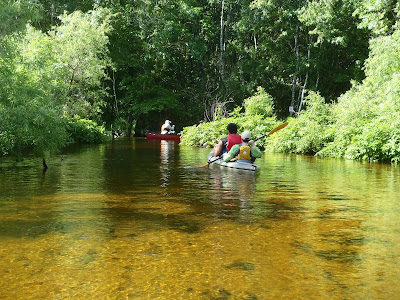 Nigel Foster photo, Florida river, yellow bottom