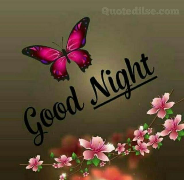 good night wala status