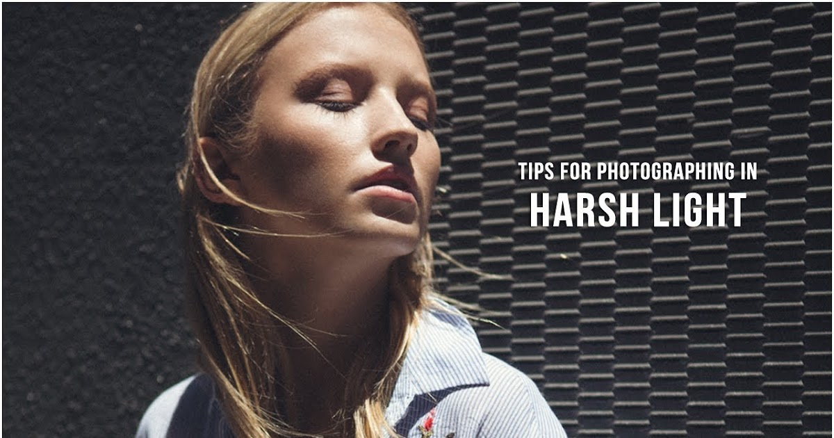 Top 5 Tips for Photographing in Harsh Midday Light
