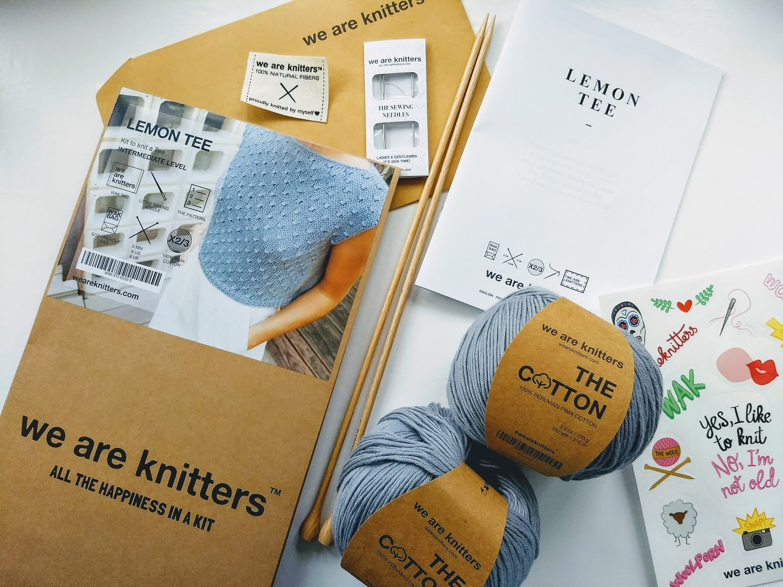 We Are Knitters kit review from a beginner knitter