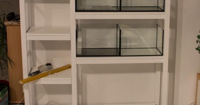 nano journal 5 oktober 2013 ivar und die sechs k nigreiche version 1 0. Black Bedroom Furniture Sets. Home Design Ideas