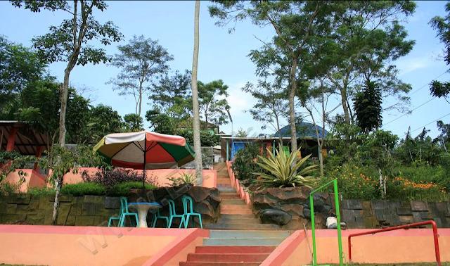 Bukit Flora di Nongkojajar Malang