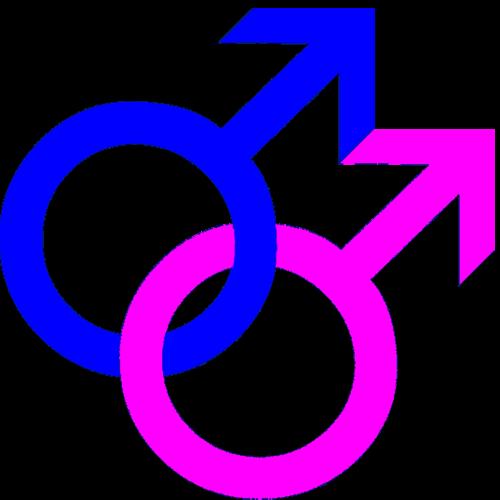 Simbolos Gay 49