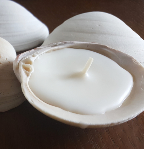 Clam Shell Candles