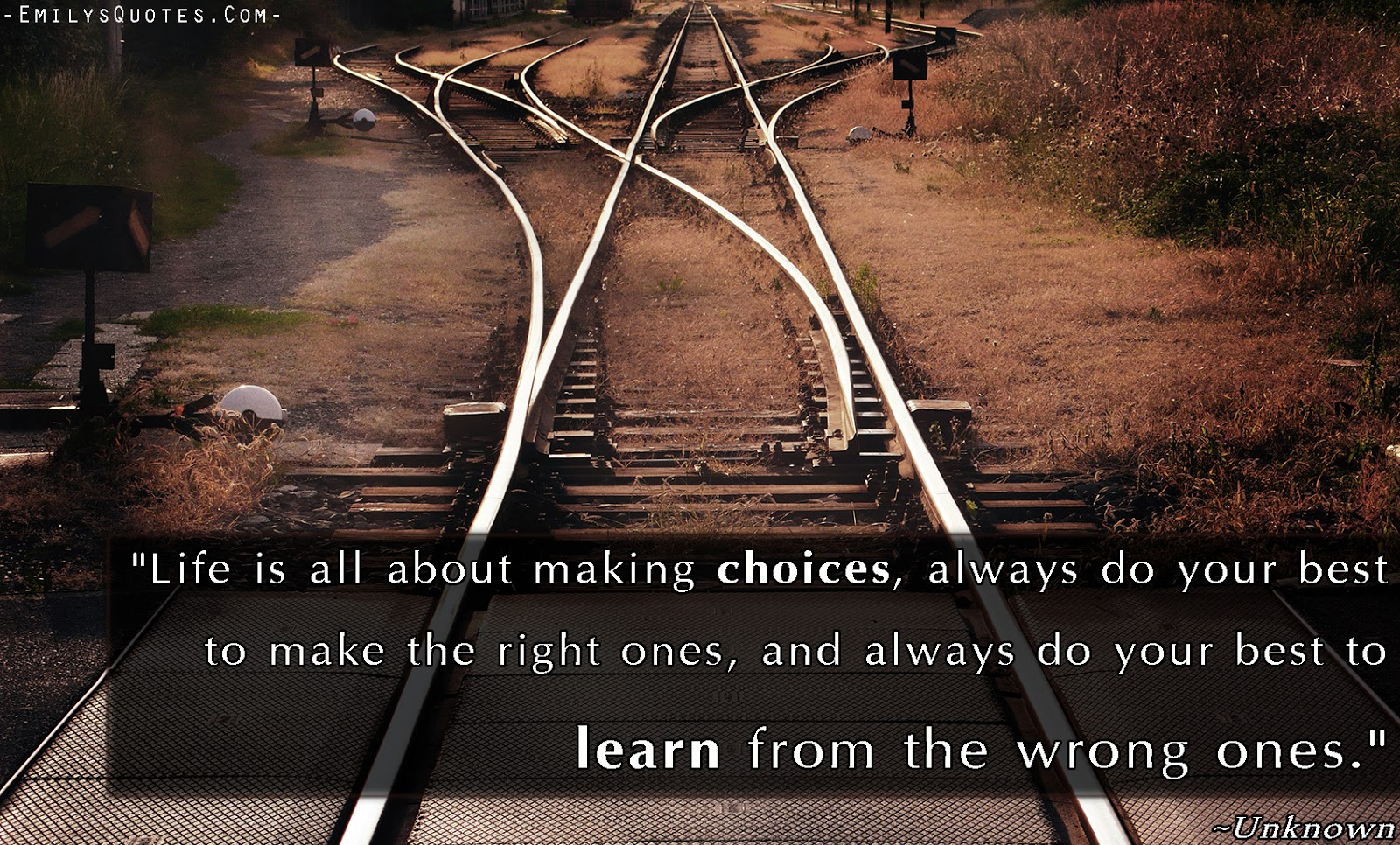 Making The Right Decision In Life Quotes: Ananda Varshini: What Do You Choose?