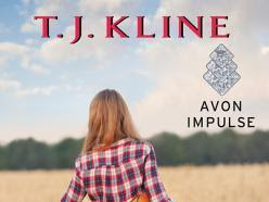 WILD AT HEART (Healing Harts #4) by T.J. Kline