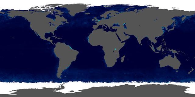 Imagem com colorização baseada em dados da NASA