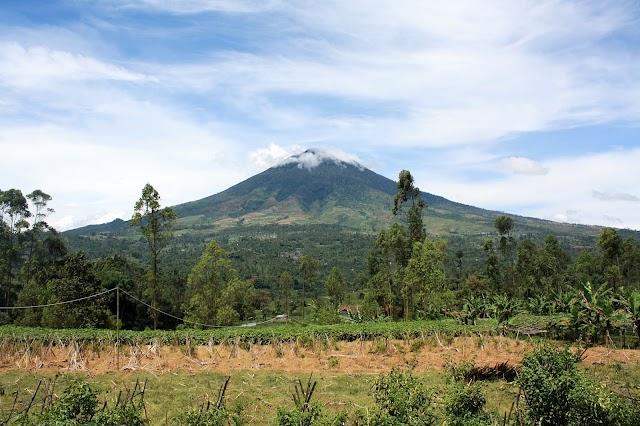 Porter Pemancar, Jalur Pendakian Gunung Cikuray Jalur Pemancar / Cilawu