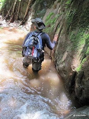 A mojarnos! Cañón El Mante en Cerro Viejo