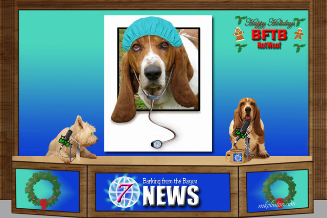 BFTB NETWoof News reports of canine vaccine