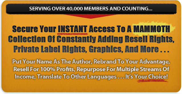 [VIP] Resell Rights Mastery [LIFETIME ENTERPRISE] [WORTH $197.00]