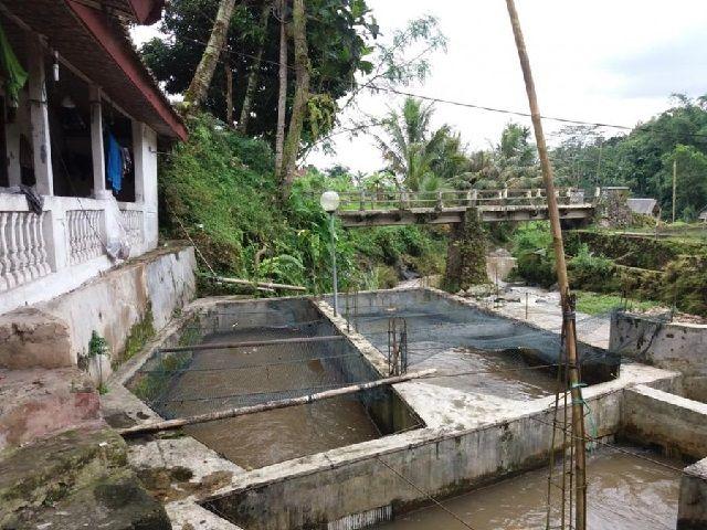 Syarat Budidaya Ikan