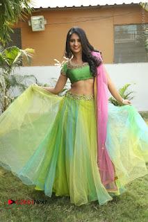 Actress Nikitha Bisht Stills in Lehenga Choli at Pochampally Ikat Art Mela Launch  0364.JPG