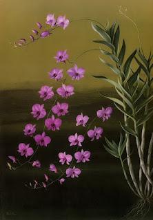 pinturas-flores-botanicas