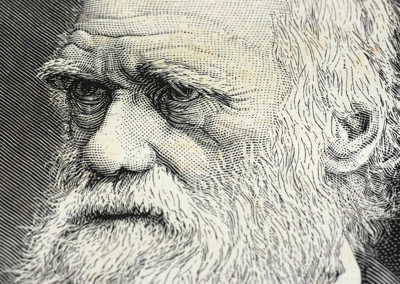 Teori Evolusi Pengantar Teori Neo Darwinisme