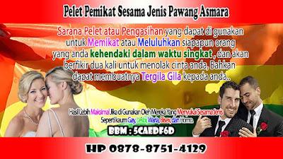 Pelet Gay Pawang Asmara