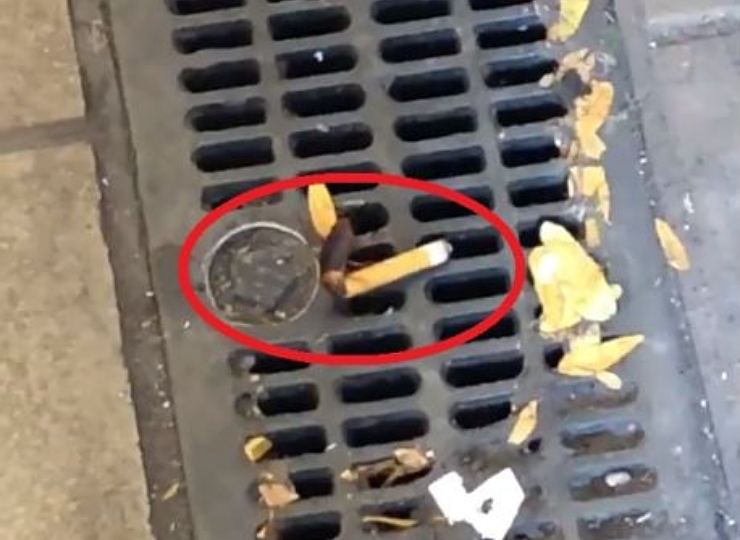 """VIDEO: """"Cucaracha fumadora"""" causa sensación en Nueva York"""