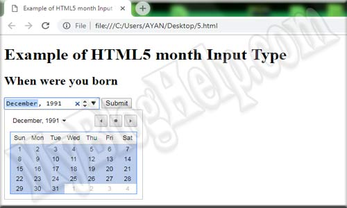 input type month