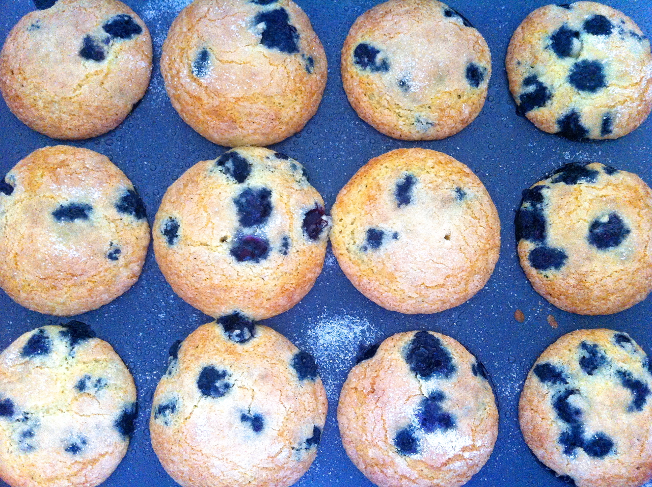 Homemade Blueberry Muffins From Scratch