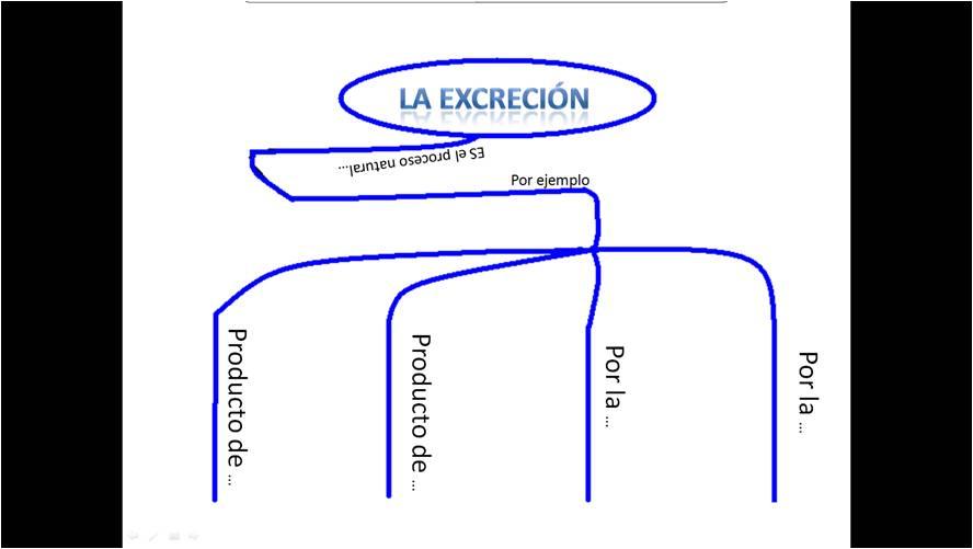 La Excreción