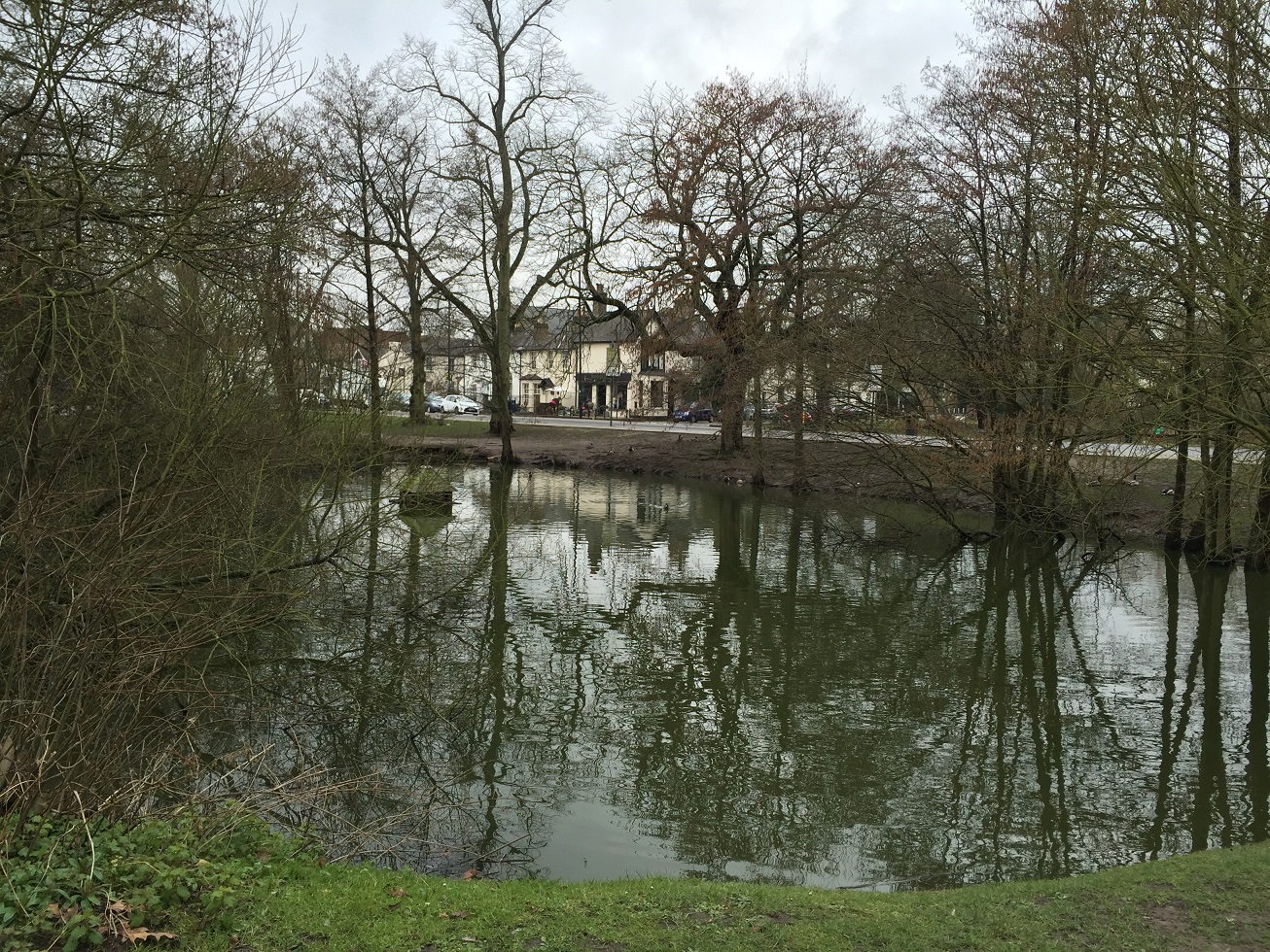 Village pond, Hadley Green, near High Barnet, London