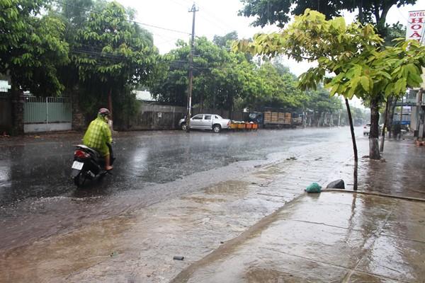 """Tây nguyên đã có mưa, nhưng chưa là """"mưa vàng"""""""