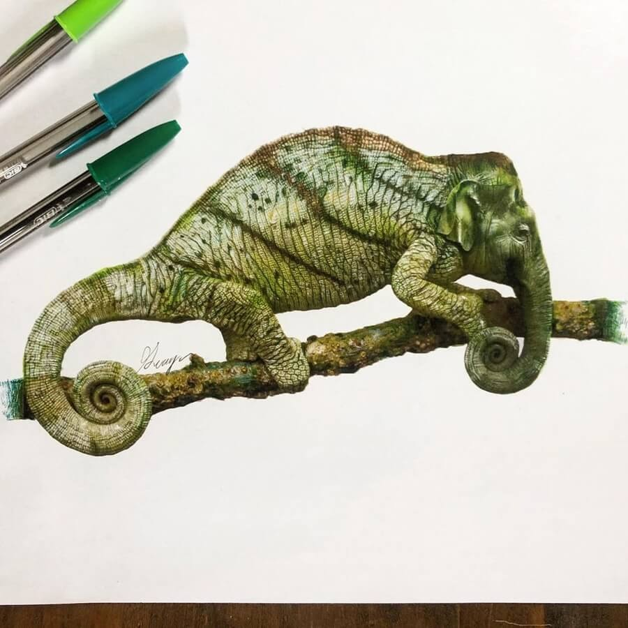 10-Chameleon-Elephant-Quanyu-www-designstack-co
