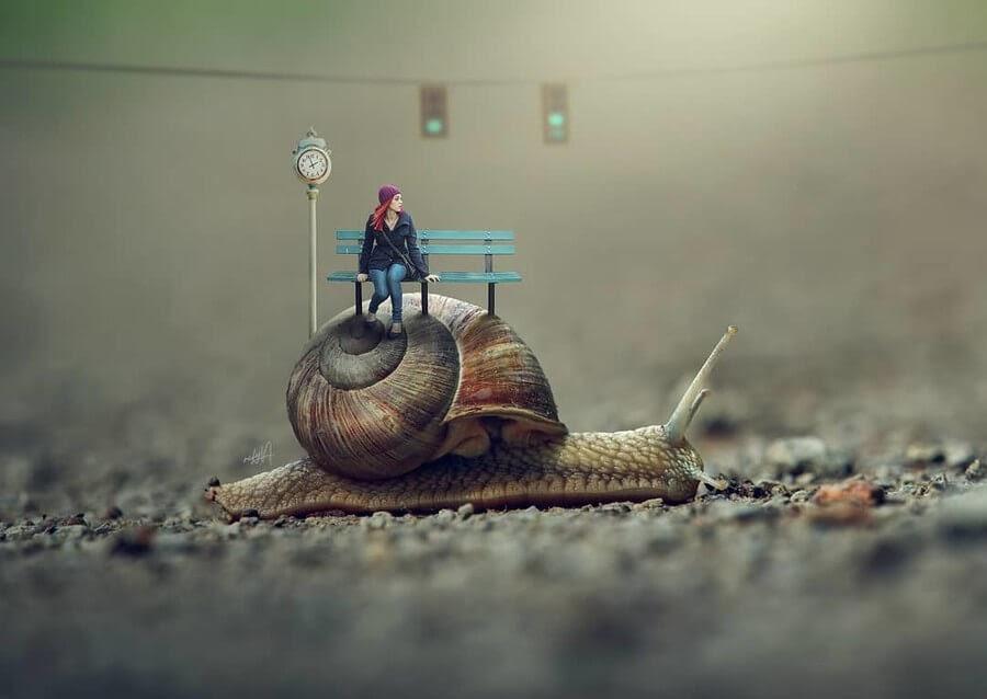 05-Snail-Transport-Rafy-A-www-designstack-co