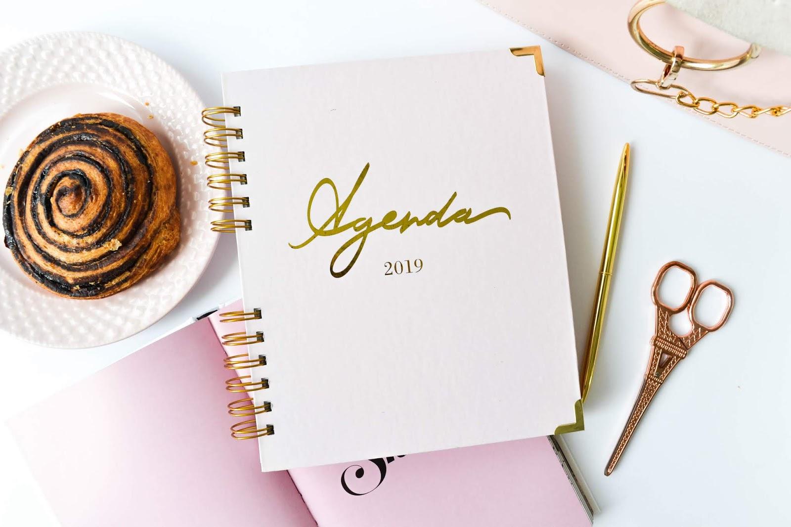 Dorinus Illustrations // 2019 Agenda