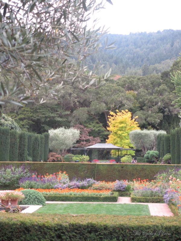 Fall Gardens at Filoli- www.gildedbloom.com