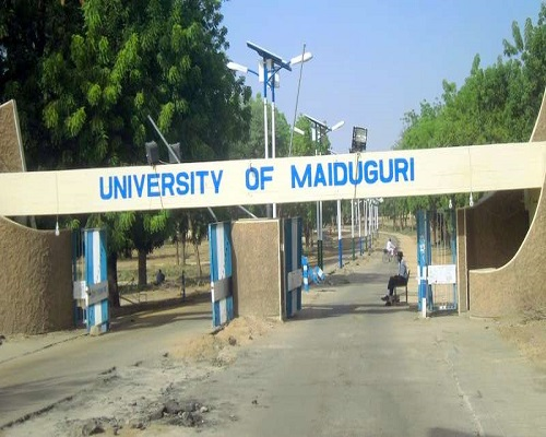 University Of Maidugri