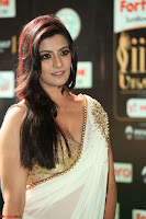 Varalakshmi in Cream Saree Sleeveless Backless Deep Neck Choli at IIFA Utsavam Awards March 2017 037.JPG