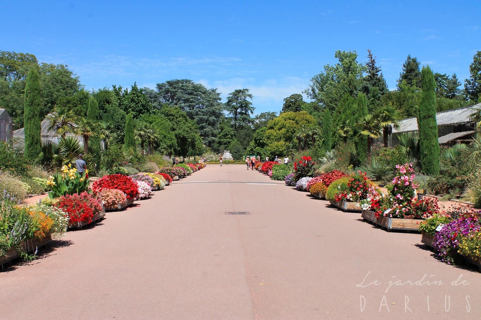 Le jardin de darius jardin botanique de lyon parc de la for Jardin zoologique de lyon