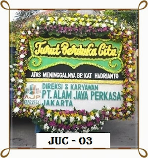 JUC-03a