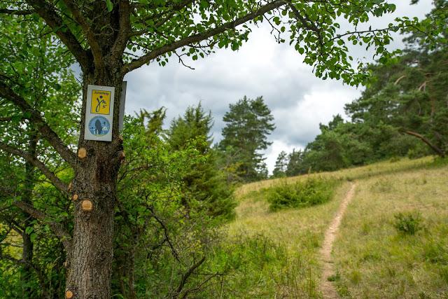 Wacholderweg von Aicha nach Allersburg  Wandern im Amberg-Sulzbacher Land 02