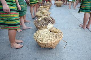 Rice Baskets Line Harvest Cultural Parade Participant