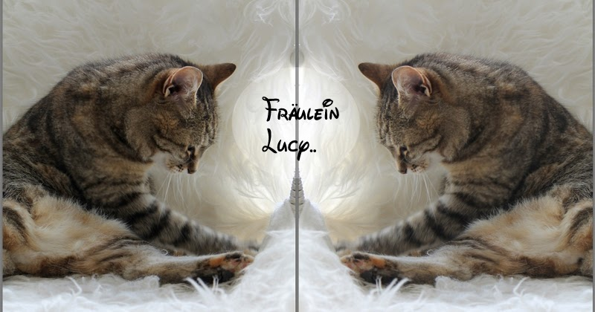 Fraeulein lucy