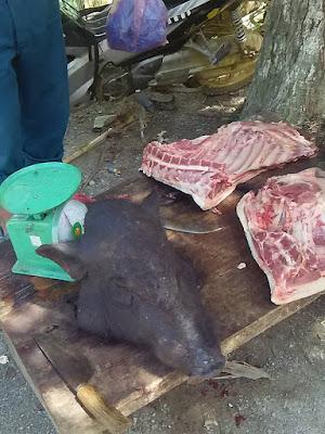 ベトナムのイノシシ肉