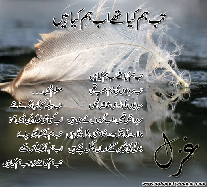 Ghazal | And Have A Special Someone In My Life | Urdu Poetry