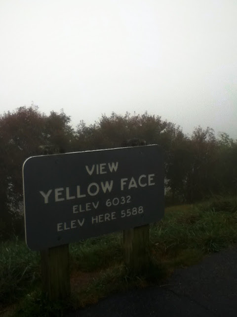 Yellow Face Blue Ridge Parkway