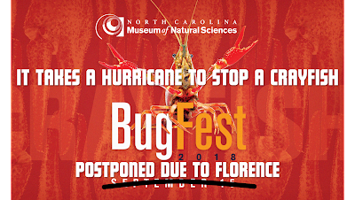 It takes a hurrican to stop a crayfish. Bugfest 2018 postponed due to Florence.