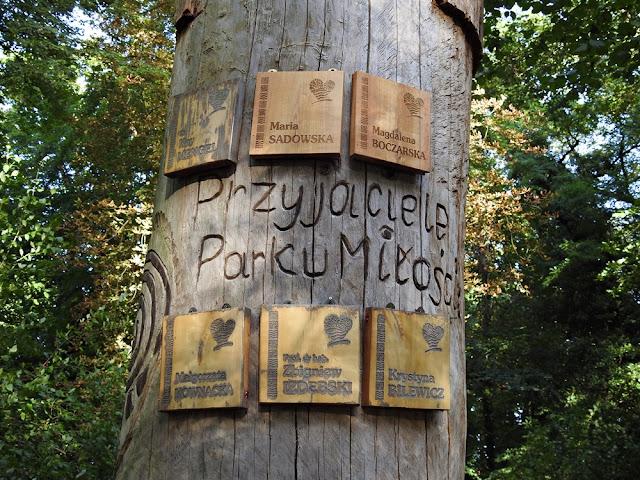 na starym dębie są tabliczki z przyjaciółmi parku w Lubniewicach