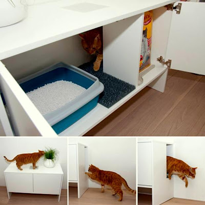 kreativiti untuk kucing