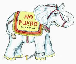 el libro el grillete del elefante gratis