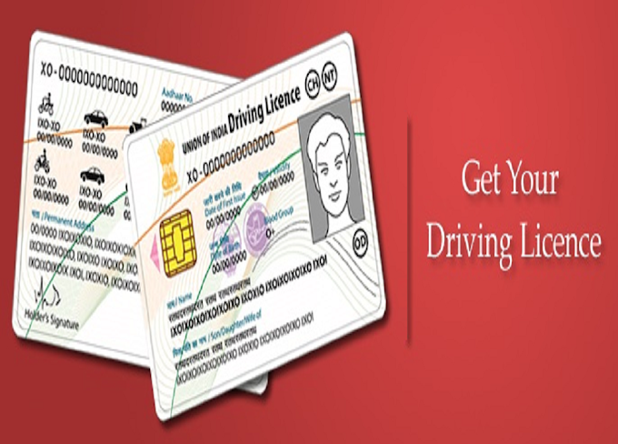 How to Download and print your driving license at home (English)